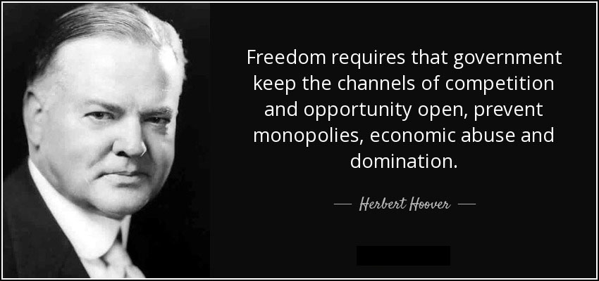 Herbert Hoover Freedom Quote